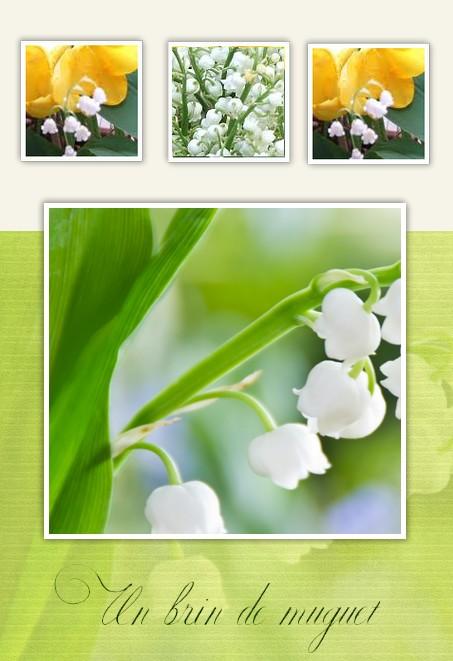 http://sd-4.archive-host.com/membres/images/213905367356762310/2013/carte_9/miguet2.jpg