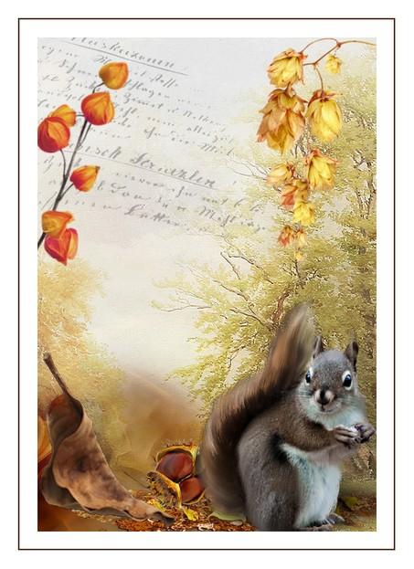 http://sd-4.archive-host.com/membres/images/213905367356762310/2013/novembre_2013/automne2.jpg