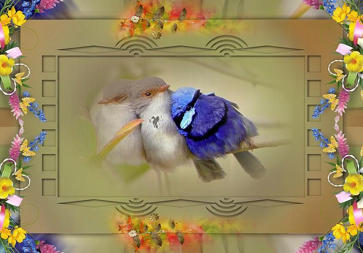 http://sd-4.archive-host.com/membres/images/213905367356762310/2014/fevrier/fevrier_2/sans_texte.jpg