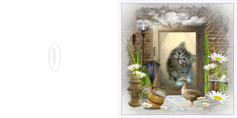 http://sd-4.archive-host.com/membres/images/213905367356762310/carte2/mai2012/stitre.jpg