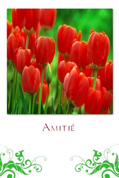http://sd-4.archive-host.com/membres/images/213905367356762310/carte_simple/juin_2011/amitie_39.jpg