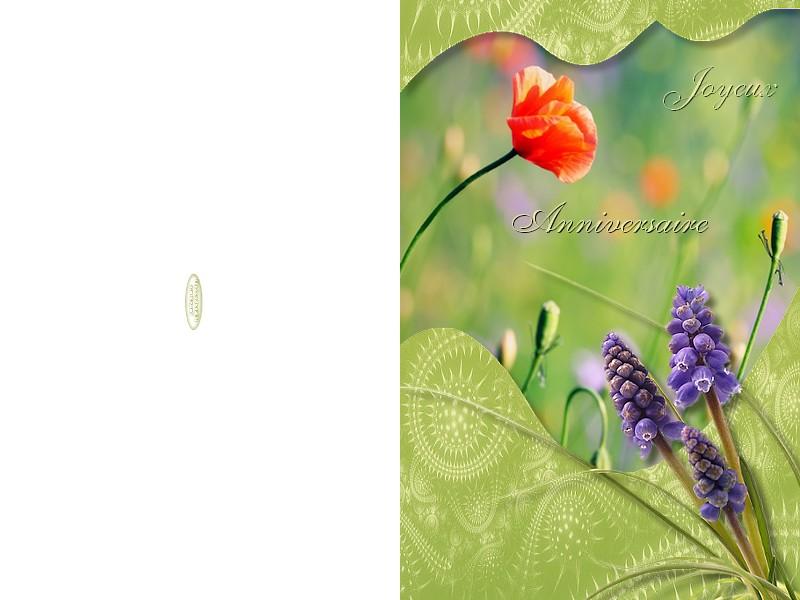 http://sd-4.archive-host.com/membres/images/213905367356762310/carte_simple/juin_2011/anniv.jpg