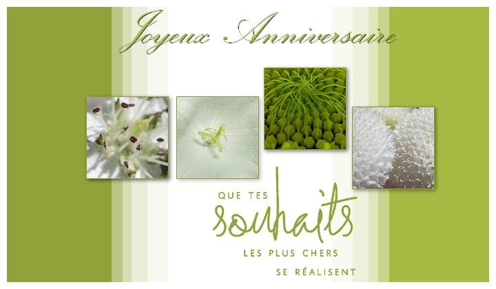 http://sd-4.archive-host.com/membres/images/213905367356762310/carte_simple/ouat_2011/anniversaire.jpg