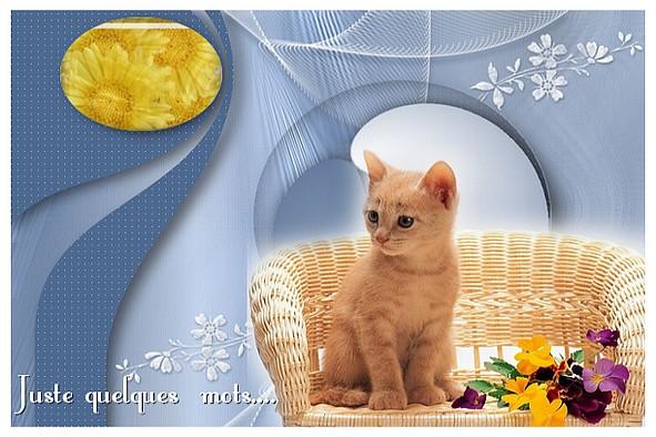 http://sd-4.archive-host.com/membres/images/213905367356762310/carte_simple/ouat_2011/juste.jpg