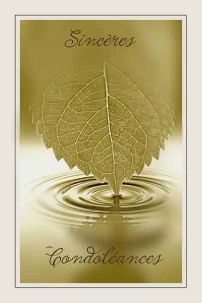 http://sd-4.archive-host.com/membres/images/213905367356762310/carte_simple2/fevrier_2012/carte_2/condo.jpg
