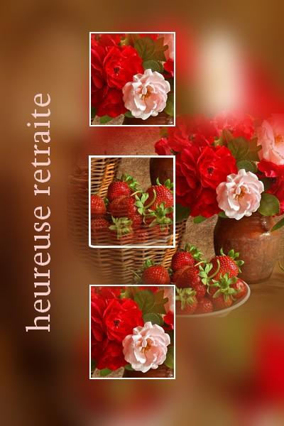 http://sd-4.archive-host.com/membres/images/213905367356762310/carte_simple2/fevrier_2012/carte_2/heureuse_retraite.jpg
