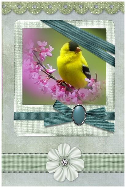 http://sd-4.archive-host.com/membres/images/213905367356762310/carte_simple2/fevrier_2012/carte_2/neutre2.jpg