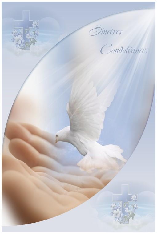 http://sd-4.archive-host.com/membres/images/213905367356762310/carte_simple2/fevrier_2012/carte_2/scondo.jpg