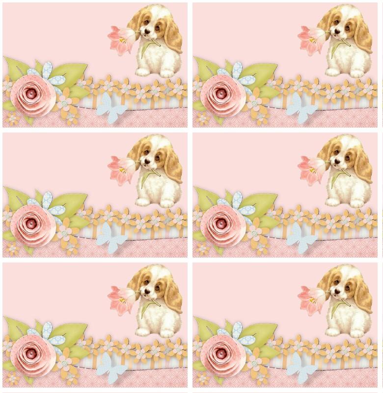 http://sd-4.archive-host.com/membres/images/213905367356762310/carte_simple2/mars_2012/et3.jpg