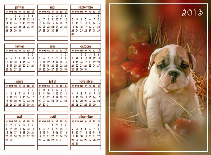 http://sd-4.archive-host.com/membres/images/213905367356762310/decembre2013/chien_2013.jpg