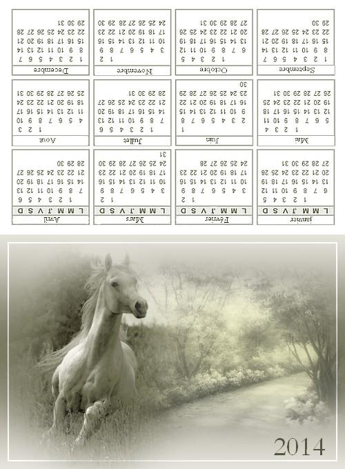 http://sd-4.archive-host.com/membres/images/213905367356762310/decembre2013/decembre3/cal_poche_cheval.jpg