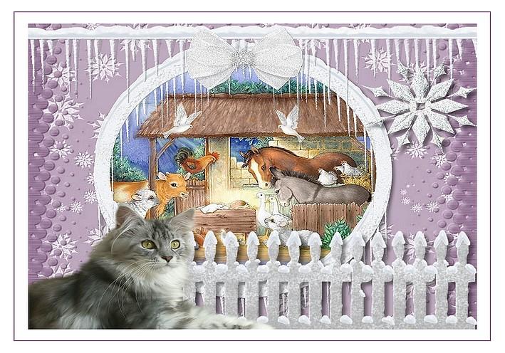 http://sd-4.archive-host.com/membres/images/213905367356762310/decembre2013/decembre_5/creche_fayrmist_carte.jpg