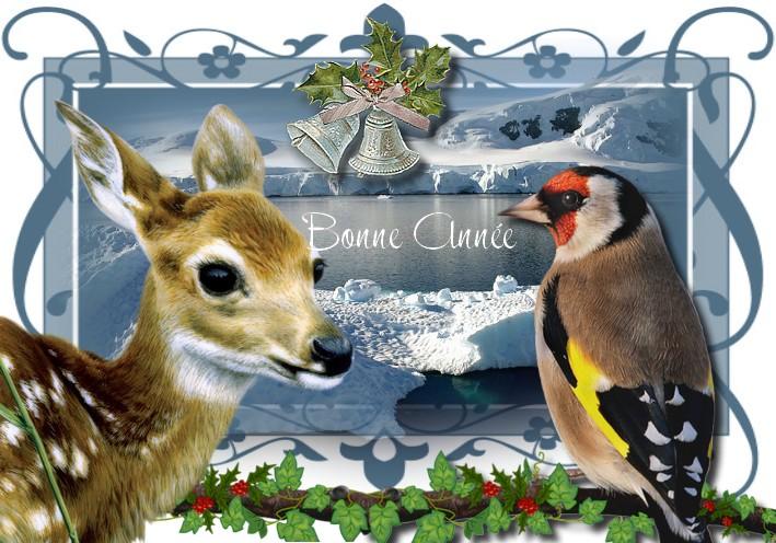 http://sd-4.archive-host.com/membres/images/213905367356762310/decembre2013/decembre_6/bonne_annee3.jpg