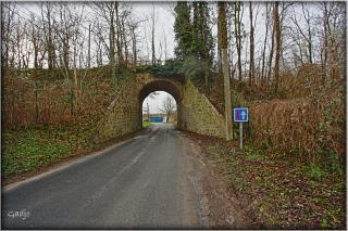 Pont-Nordpetit.jpg