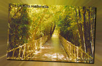 Marrakech pps sabrina 0056