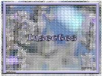 pps Sabrina 0090 insectes