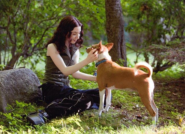 Hannah Kaminsky veganice