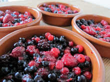 crumble-fruits-rouge vegetalien vegan
