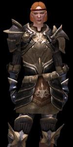 plastron guerrier