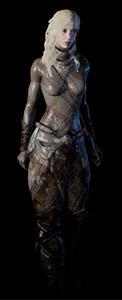 Schéma armure
