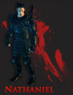 Dragon Age Awakening Nathaniel Howe