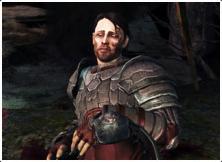 Soldat Dragon age Awakening