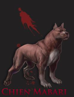 le chien mabari