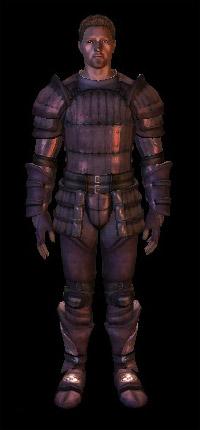 armure supérieure en peau de dragon de Wade