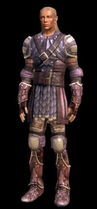 armure en cuir de drake