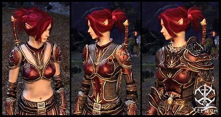 phoenix armure