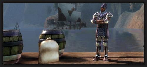 Dragon age origins le collectif des mages