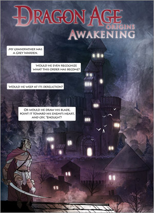 Dragon Age Origins Awakening Penny Arcade comics