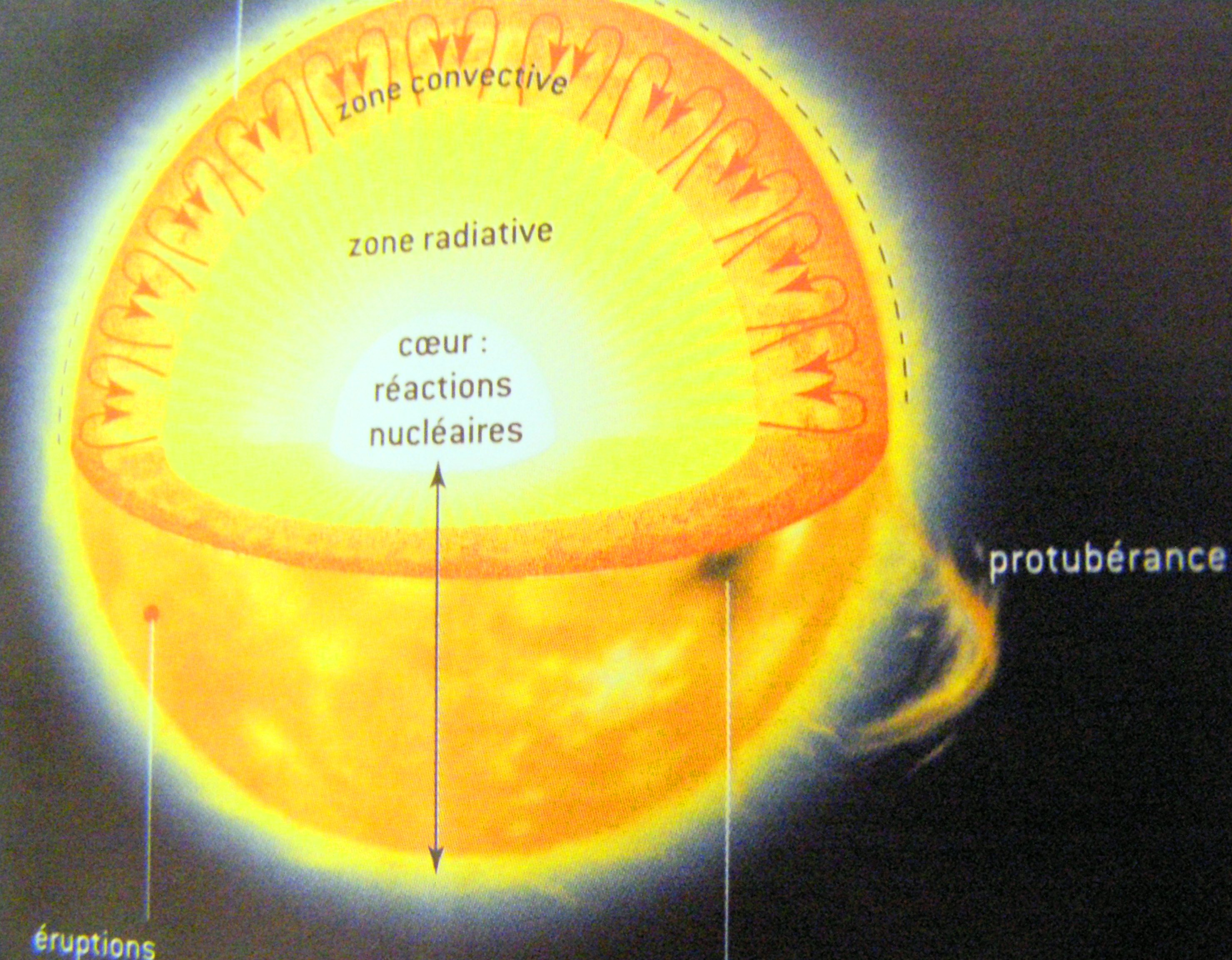 Coupe schématique du Soleil.