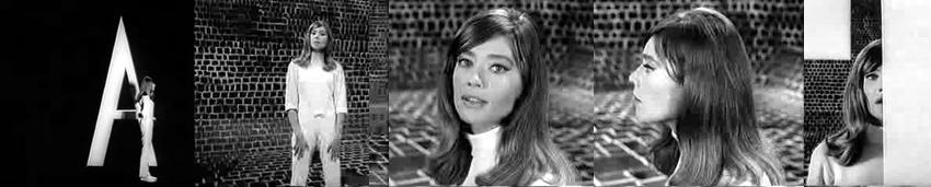 1965 - Portrait in Musik Truck3