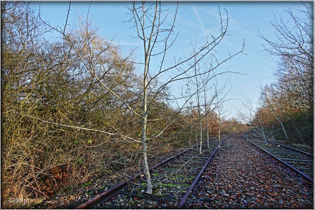 Rail2petit.jpg