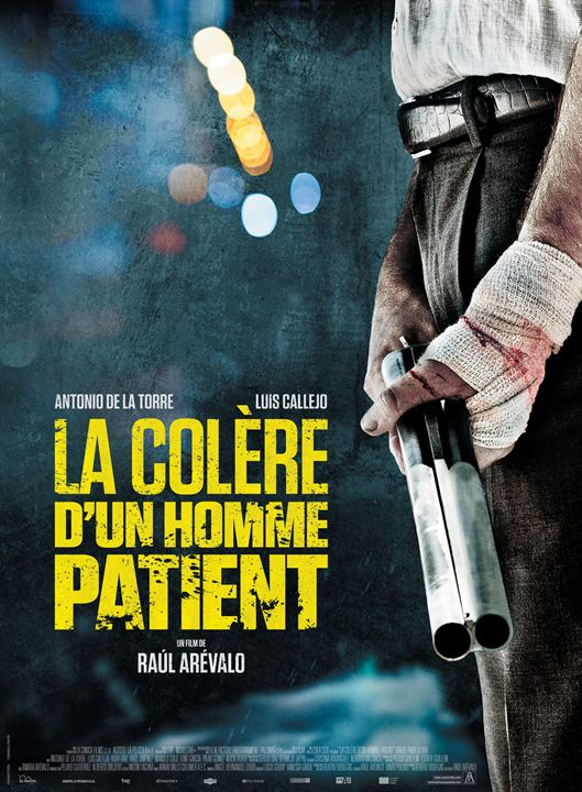 The Fury of a Patient Man 2016 MULTI VFi 720P mHD X264 AC3