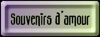 BOUTON_SOUVENIRS_DAMOUR_MAUVE_VERT.png